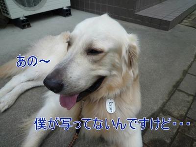 blog10_090924
