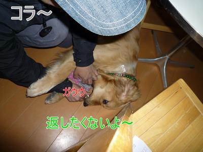 blog3_100126
