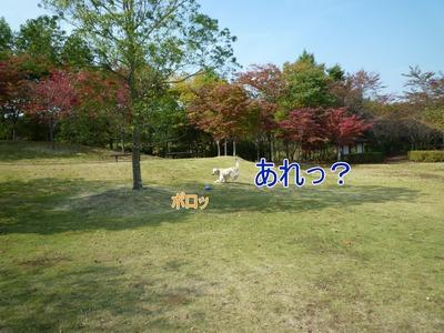 blog6_091020