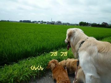 blog6_090802