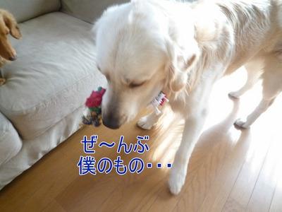 blog3_102019