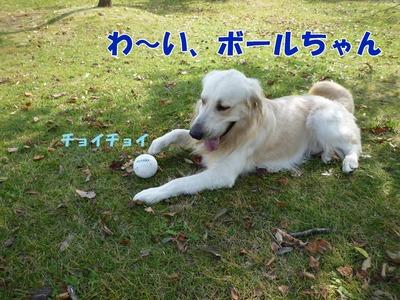 blog3_091018