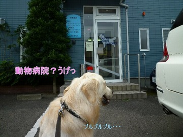 blog2_090712