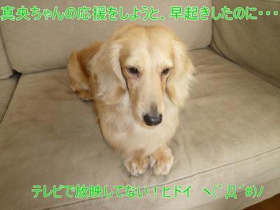 blog1_103028