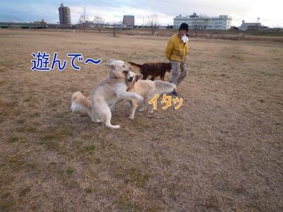 blog3_1001b