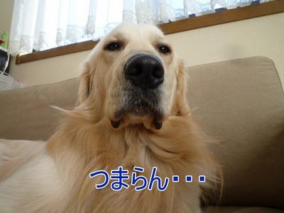 blog5_100309