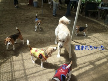 blog3_090814