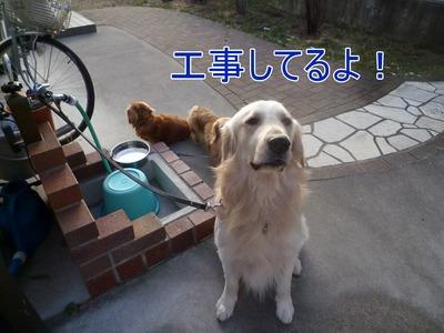 blog1_100209
