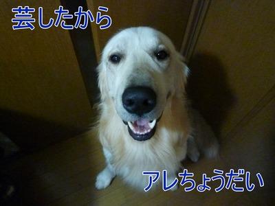 blog3_100326