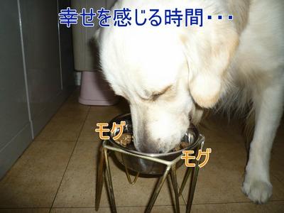 blog1_091119