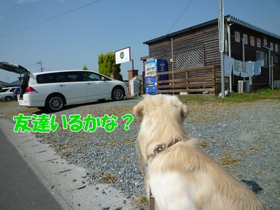 blog1_091019