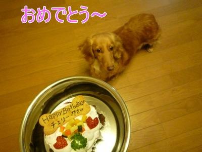 blog5_100420