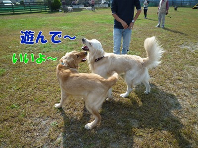blog5_091019