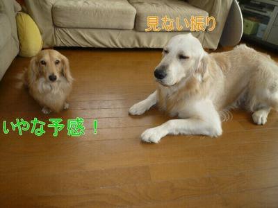 blog3_091220