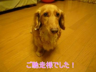 blog9_100420