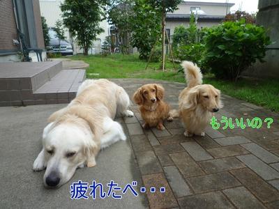 blog2_09016