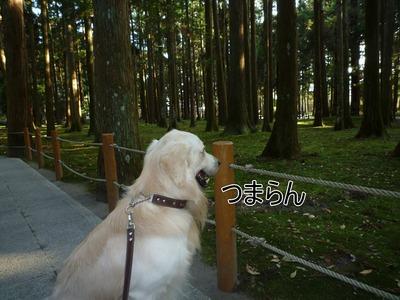 blog4_091021