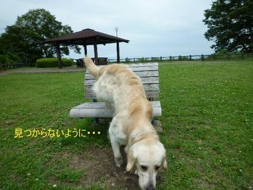 blog2_090720