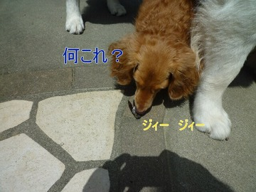 blog2_090802