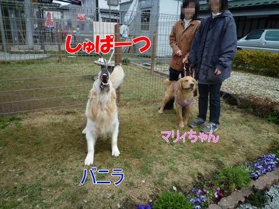 blog8_104018