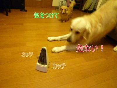 blog2_091130