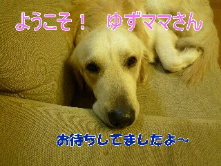 blog10_100315
