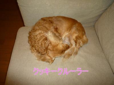 blog2_091221
