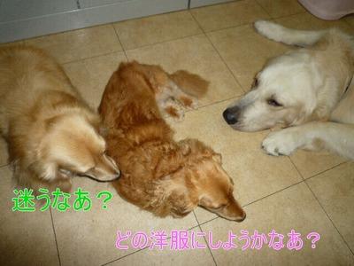 blog1_090824