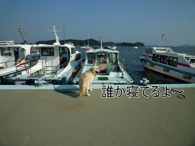 blog2_091021