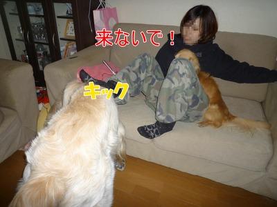 blog4_1001a