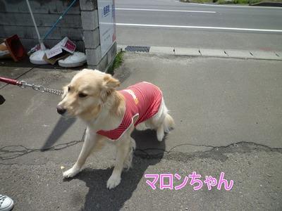 blog6_104018