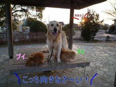 blog2_100119