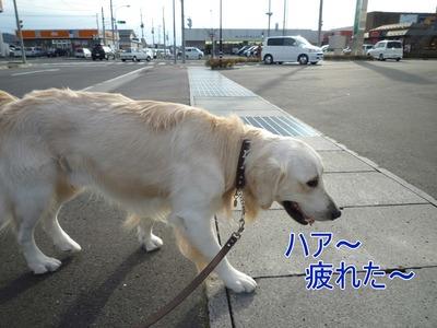 blog4_091122