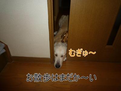 blog1_091022