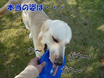 blog5_091020