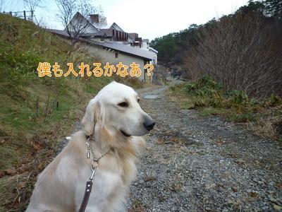 blog1_091122
