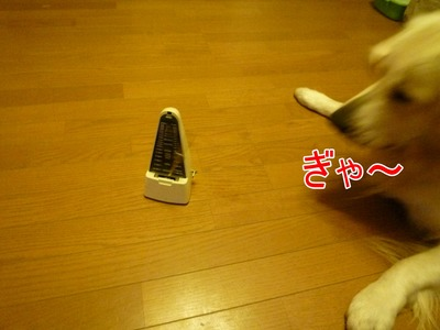 blog4_091130