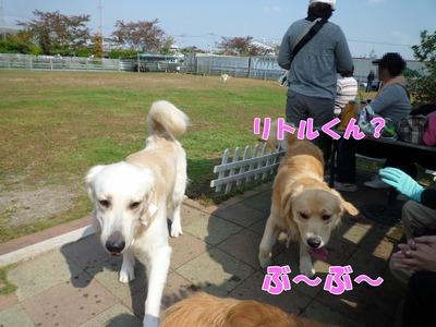 blog3_091019