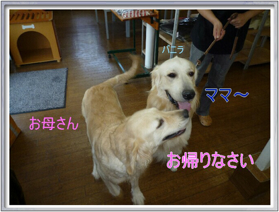 blog3_090823