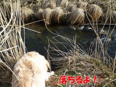 blog3_103022