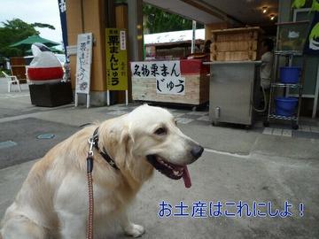 blog4_0813