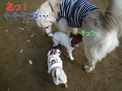 blog2_091224
