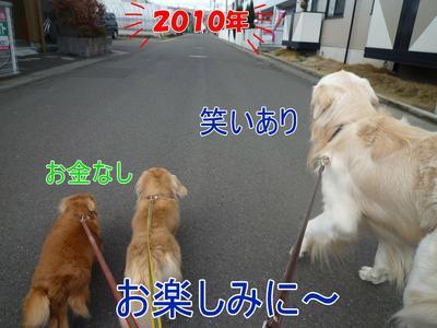 blog4_091231