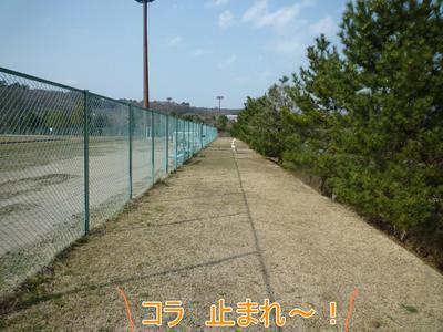 blog4_100321