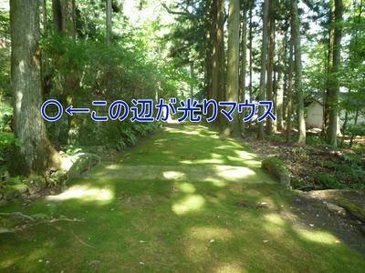 blog4_090924