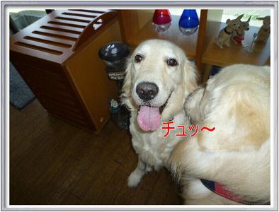 blog4_090823