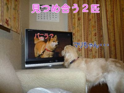 blog4_091220