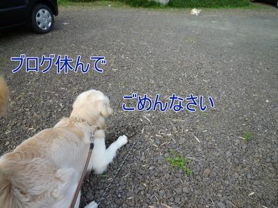 blog2_09013