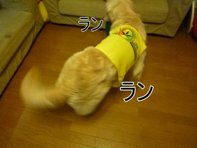 blog2_104015