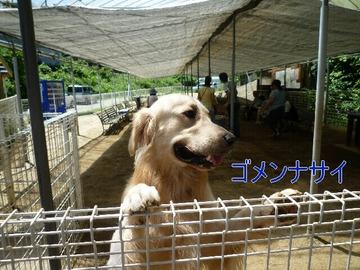 blog4_090814